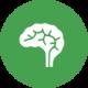 brain_green