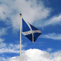 Scoziaa