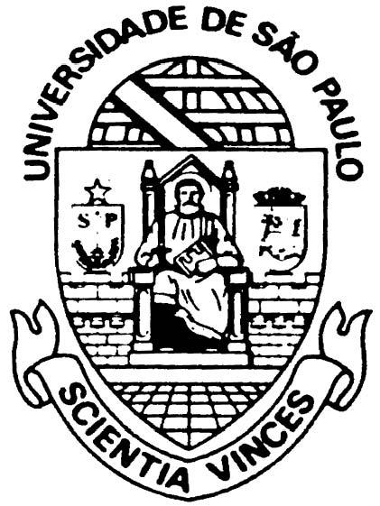 Migliori Università dell'America Latina del Sud Universidade de san paolo