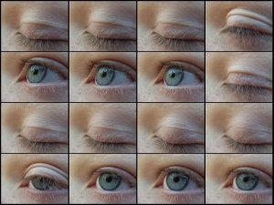 eyes-29_l