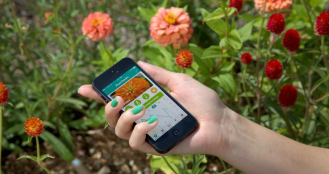 il giardiniere in un app parrot flower power smartweek. Black Bedroom Furniture Sets. Home Design Ideas