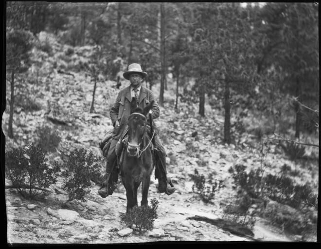 Carl Lumholtz sul mulo, 1892