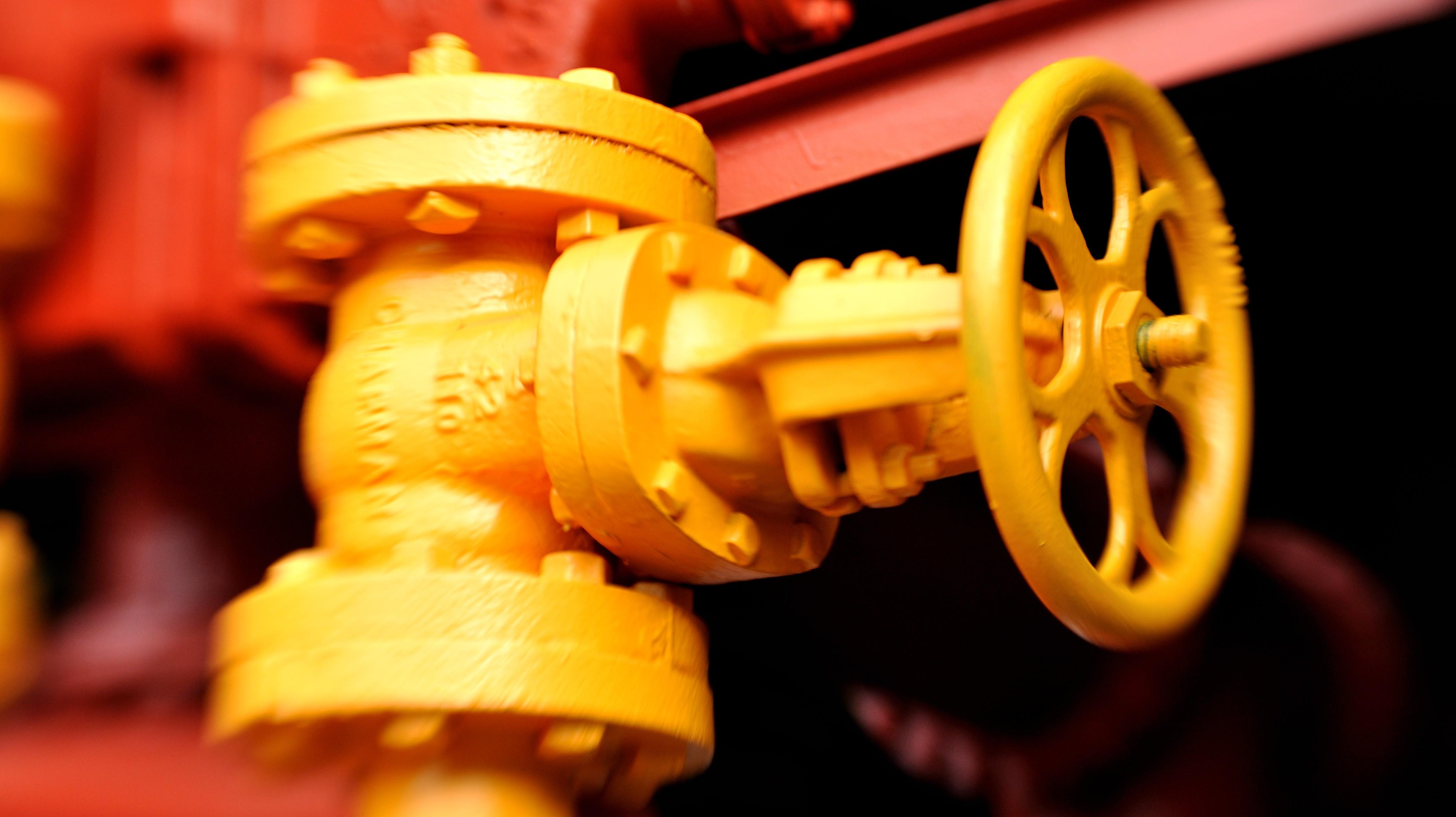gas-plant-valve