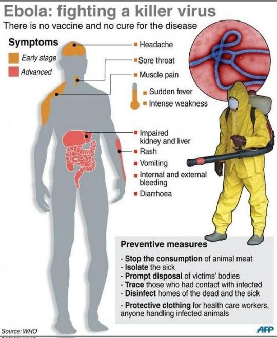 Ebola, grafico