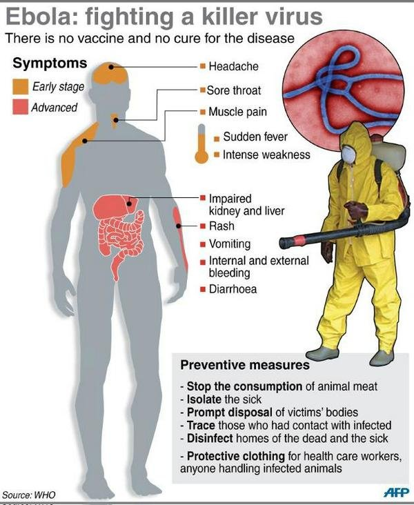 an analysis of the origins and causes of the ebola virus The ebola virus disease (evd), previously referred to as ebola hemorrhagic fever, is a severe and often fatal infection it is spread through contact with infected blood or bodily fluids ebola virus disease was first identified in 1976 in sudan and the democratic republic of the congo (formerly zaire).