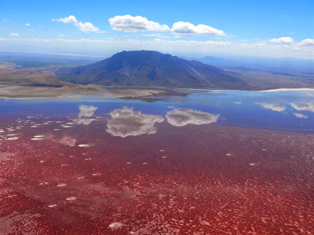lago natron tanzania fenomeni naturali incredibili