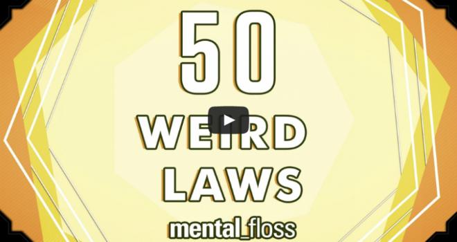 leggi-bizzarre