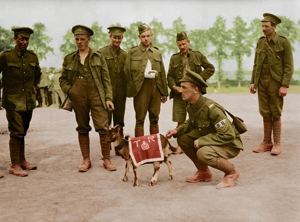 prima guerra mondiale a colori 9