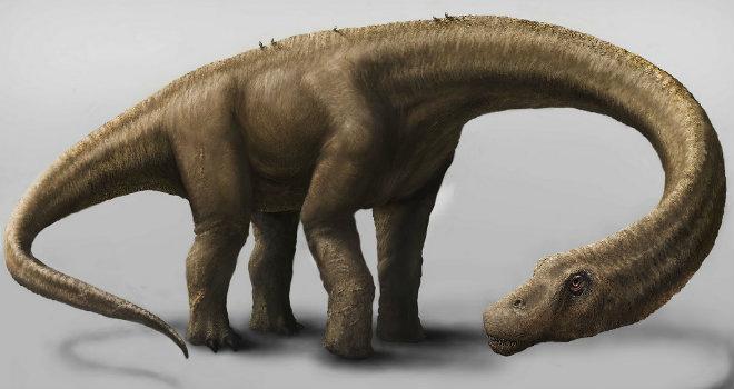 Dreadnoughtus schrani