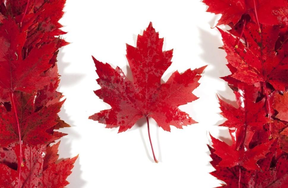 traduzioni, asseverazioni e legalizzazioni canada