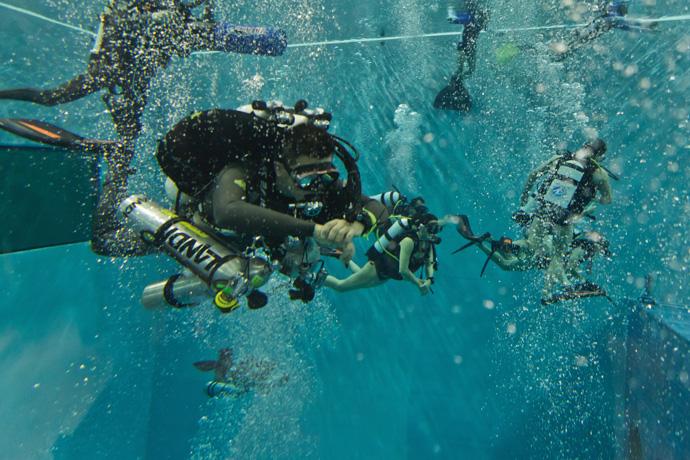 Y 40 la piscina italiana pi profonda al mondo smartweek for Y 40 piscina