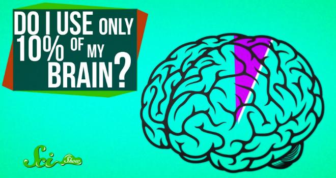 10-percento-cervello