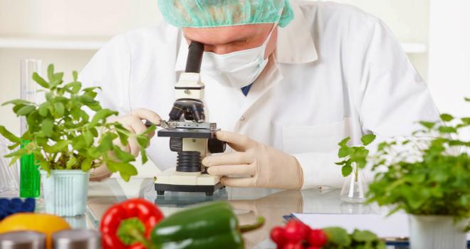 food-tech-innovation-day