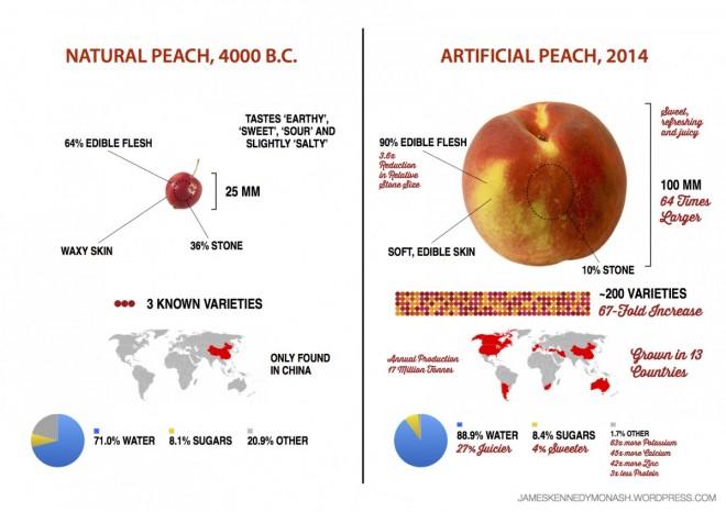 Quanto E' Cambiata la Frutta da Quando l'Uomo Ha Cominciato a Coltivarla?.1