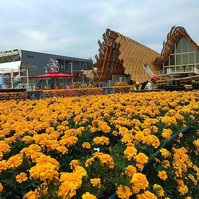 Expo Padiglione Cina