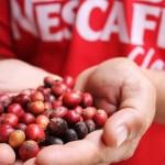 Il nome più famoso per il caffè istantaneo, di proprietà di Nestlè, nonostante sia sulle labbra (e nello stomaco) di tutti, ha perso una posizione rispetto al 2014.