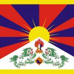 """Usata come bandiera militare fino al 1950, è stata poi dichiarata illegale dal governo cinese che ha deciso di sostituirla con l'attuale """"bandiera della Repubblica popolare cinese"""", ovvero quella rossa a cinque stelle"""
