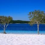Le spiagge di Fraser Island sono pericolosissime. Le acque che circondano l'isola sono soggette a correnti fortissime e sono piene di squali e meduse. La spiaggia, invece, è nota per essere pericolosa per la presenza di coccodrilli, ragni mortali e dingo.