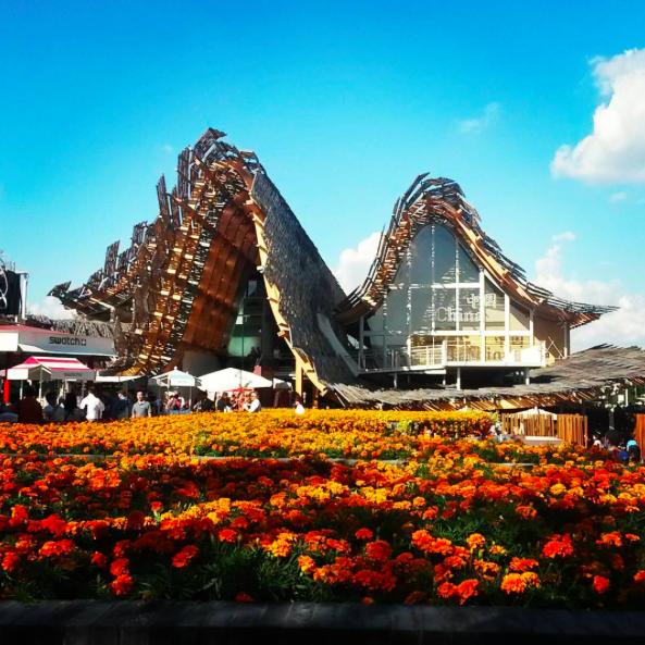 Foto più belle di Expo