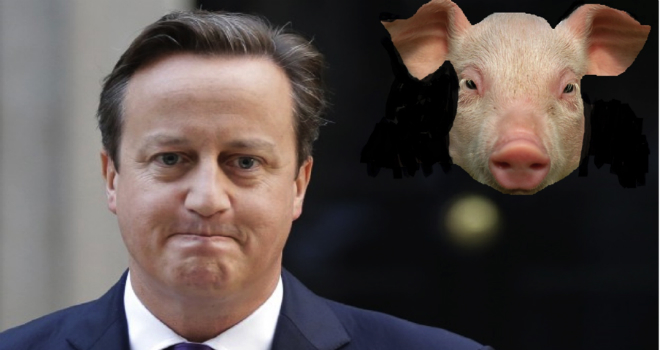 pig gate cameron scandalo