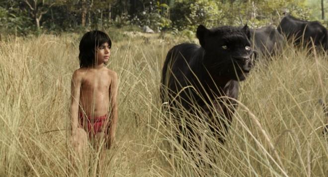 """Versione della Disney di """"Il libro della giungla"""", che seguirà le avventure di Mowgli, un ragazzo cresciuto nella giungla. Il film vedrà come protagonisti Ben Kingsley, Lupita Nyong'o, Bill Murray, Scarlett Johansson  e Christopher Walken."""