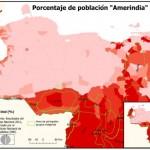 Los Amerindios (popoli indigeni) comprendono oggi più di cinquanta differenti gruppi etnici che abitano il Venezuela. I puri indigeni amerindi costituiscono circa il 2% della popolazione. L'elenco nel database Ethnologue delle lingue da loro parlate conta 101 lingue, di cui 80 sono parlate oggi come lingue viventi. Attualmente i popoli indigeni che abitano il paese stanno per lo più a sud del fiume Orinoco, nella regione di Guayana, un'area che copre la metà del paese, ma la popolazione rappresenta solo circa il 5 % dei venezuelani.