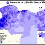 Los Blancos (Bianchi) sono per lo più discendenti dei coloni spagnoli, ma includono anche una serie di altri europei che in passato furono attratti dalla crescita economica (ad esempio, portoghesi, italiani e tedeschi emigrarono nella regione a metà del 20 ° secolo a causa della crescita nell'industria petrolifera). Essi sono concentrati nella zona a nord del fiume Orinoco (dove vive il 95% dei venezuelani), principalmente in importanti aree urbane come Grande Caracas, Maracaibo, Maracay, Valencia, Lecheria, Barquisimeto / Cabudare, Colonia Tovar, Margarita Island e la penisola Araya. Rappresentano quasi metà della popolazione (42-43%).