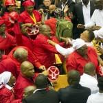 I membri del parlamento sudafricano si scontrano.