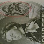 """Una banconota da 50 rupie, che era in circolazione nelle Seychelles tra il 1968 e 1973, aveva la parola """"sex"""" incorporata nel suo design. La parola incriminata può essere individuata nelle foglie delle palme accanto a un'immagine della regina Elisabetta."""