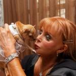 """Il Chihuahua Conchita è stato da sempre descritto come """"il cane più coccolato del mondo"""" prima ancora che il suo proprietario, Gail Posner, scomparve nel 2010, e le lasciò una fortuna che comprendeva un fondo fiduciario di 3 milioni di dollari e un palazzo del valore di 8,3 milioni a Miami. Conchita ha indossato le perle, bikini firmati Cartier, collane e borse Louis Vuitton."""