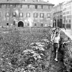 Orti di guerra in via San Marco  Durante la seconda guerra mondiale nascono gli orti di guerra: per sopperire al grande fabbisogno della popolazione, le aiuole e i giardini pubblici vengono trasformati in aree per la coltivazione di ortaggi e di frumento.