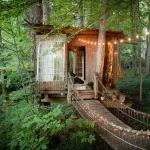 Quella di Atlanta non è solo la casa sull'albero per eccellenza, ma anche la più richiesta dai clienti di Airbnb