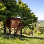 Un letto e un bagno. E' quello che si ha a disposizione affittando questa casa sull'albero per 161 dollari a notte. La cifra è alta, ma il paesaggio che circonda la location è mozzafiato.