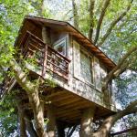 La casa sull'albero più simile allo stereotipo è quella che si trova a 15 minuti da San Francisco, in California.