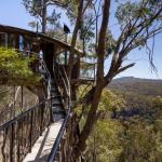 Questa impressionante casa sull'albero in Australia, sulle Blue Mountains, vanta ampi spazi aperti, dal momento che si trova tra due parchi nazionali