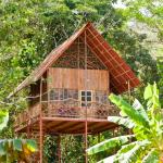Questa casa si trova in Costa Rica su un albero situato in una foresta pluviale di 35 acri, con fresche brezze, fauna selvatica e sorgenti termali nelle vicinanze.