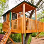 Questa casa sull'albero, a circa 30 minuti da Chicago, costa circa 200 dollari a notte.