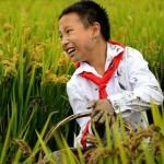 Zhixuan Wu (Cina) 12 anni