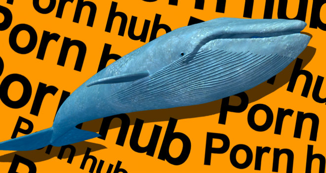pornhub-balene