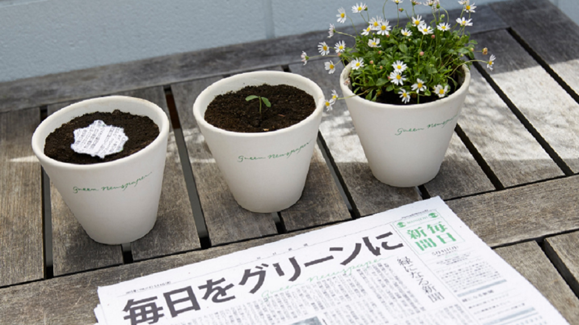 giornale-che-si-pianta