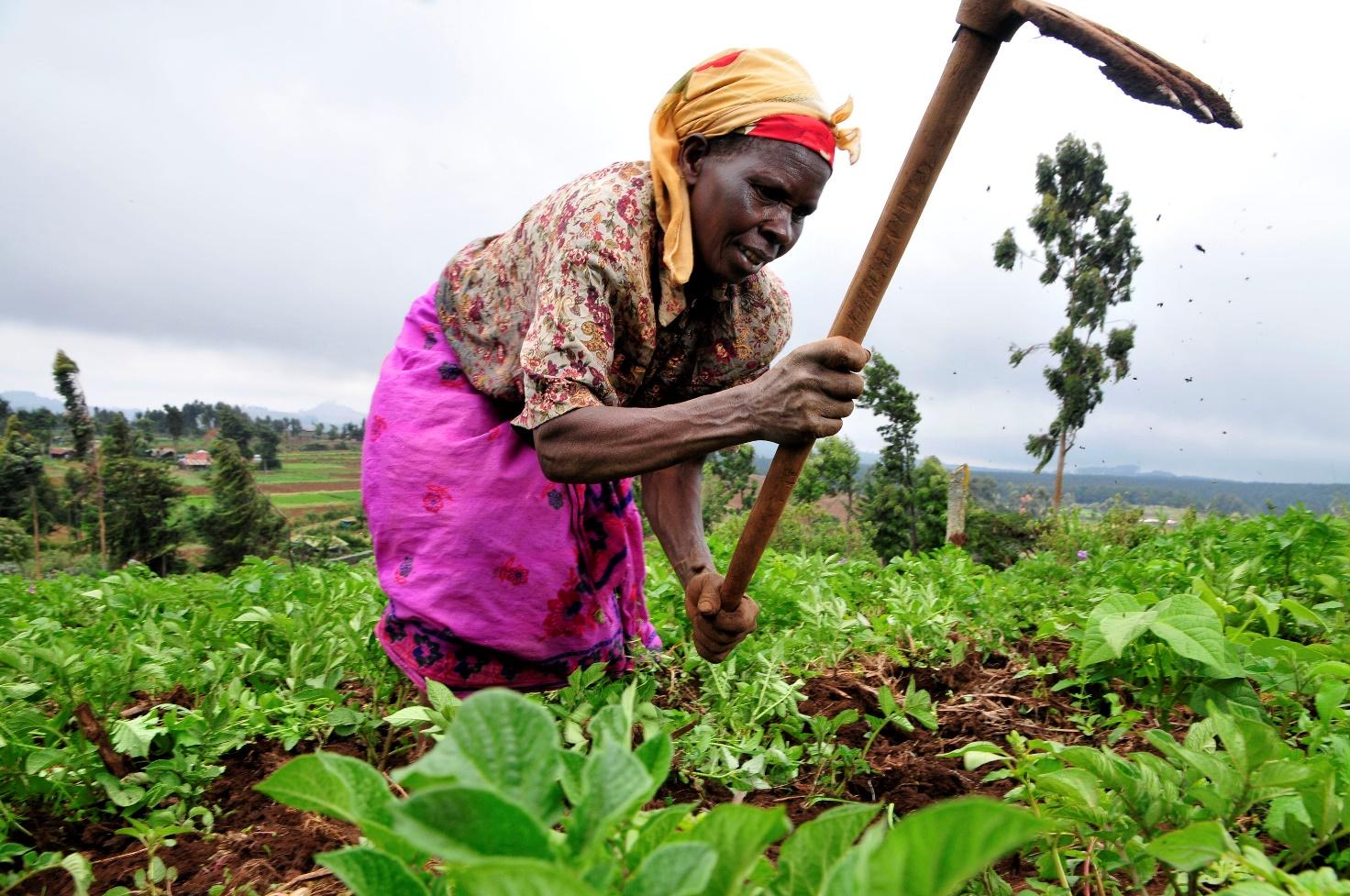 sviluppo economico sostenibile