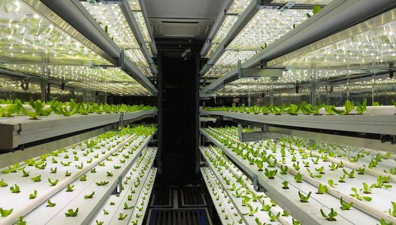 space farming 1
